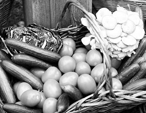 Мало кто говорит, что еда на прилавках российских магазинов соответствует всем требованиям