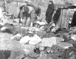В Польше вновь требуют признать Волынскую резню геноцидом
