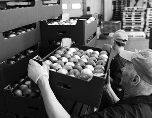 Аграрный экспорт помогает Украине выживать, но пока не способен поднять ее экономику