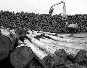 Мораторий дал хороший стимул для развития украинской деревообработки