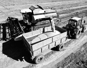 Китай предлагает России вместе ударить по мировому лидеру по производству сои – США