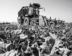 Сельское хозяйство перестало быть драйвером роста российской экономики