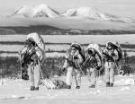 Столь массовые учения НАТО в Арктическом регионе проводятся впервые за десятилетия