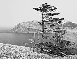 Японские власти лишь имитируют желание вернуть Курильские острова