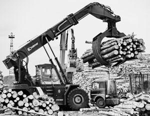 Только в лесной отрасли Россия ежегодно теряет триллион рублей