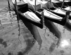 Безлюдная Венеция, к берегам которой вернулись дельфины, символизирует принудительную «очистку планеты»