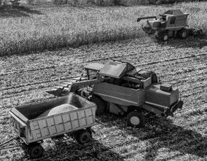 Заменит ли соя пшеницу в России?