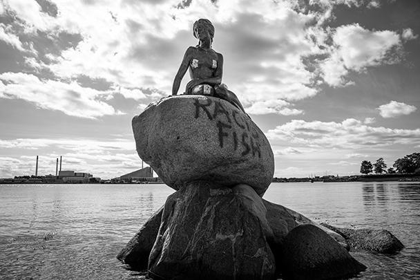 Знаменитая статуя Русалочки, стоящая в порту Копенгагена, в очередной раз подверглась вандализму. На этот раз на ней написали «Расистская рыба» – очевидно, это стало отголоском мировых протестов, начавшихся со смерти в США Джорджа Флойда, скончавшегося после жесткого задержания полицейскими