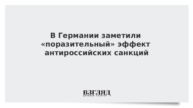 В Германии заметили «поразительный» эффект антироссийских санкций