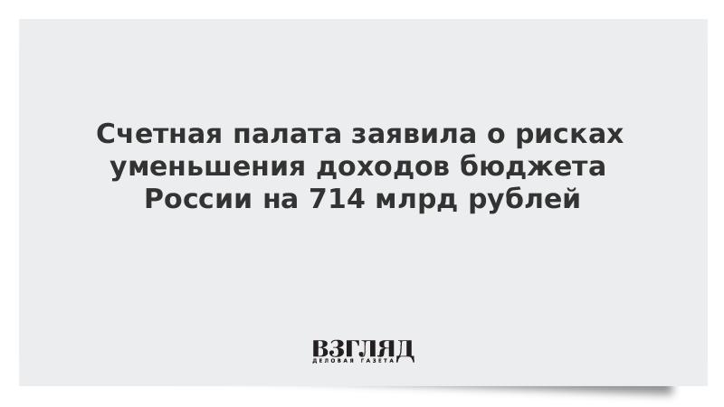 Счетная палата заявила о рисках уменьшения доходов бюджета России на 714 млрд рублей