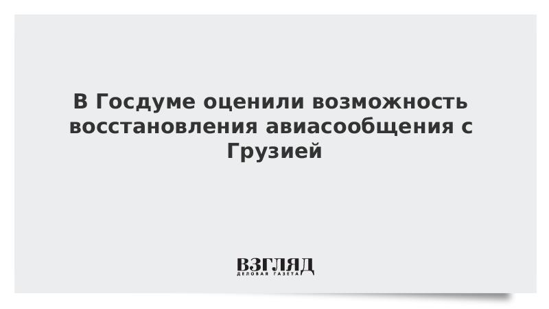 В Госдуме оценили возможность восстановления авиасообщения с Грузией