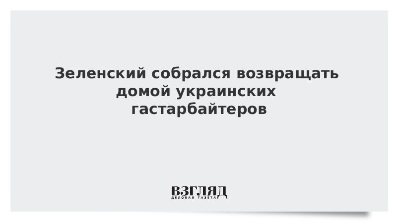 Зеленский собрался возвращать домой украинских гастарбайтеров