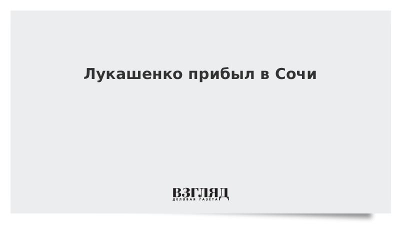 Лукашенко прибыл в Сочи