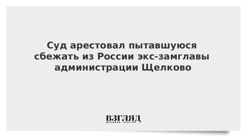 Суд арестовал пытавшуюся сбежать из России экс-замглавы администрации Щелково