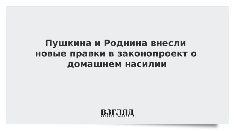 Пушкина и Роднина внесли новые правки в законопроект о домашнем насилии