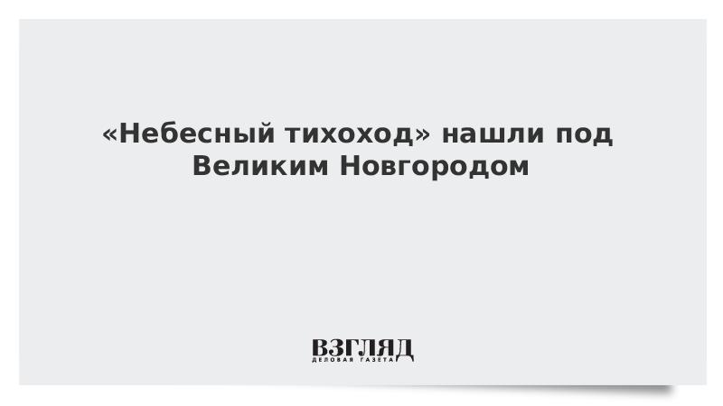 «Небесный тихоход» нашли под Великим Новгородом