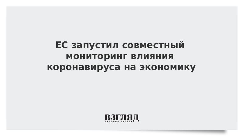 ЕС запустил совместный мониторинг влияния коронавируса на экономику