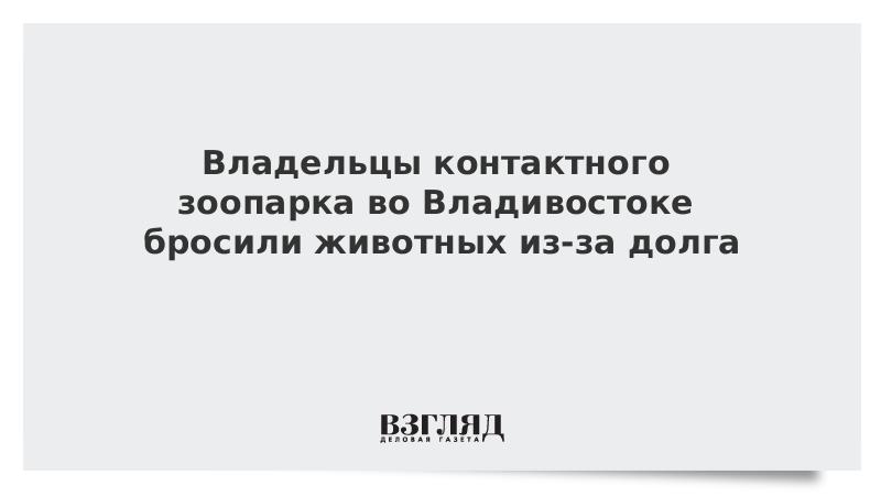 Владельцы контактного зоопарка во Владивостоке бросили животных из-за долга