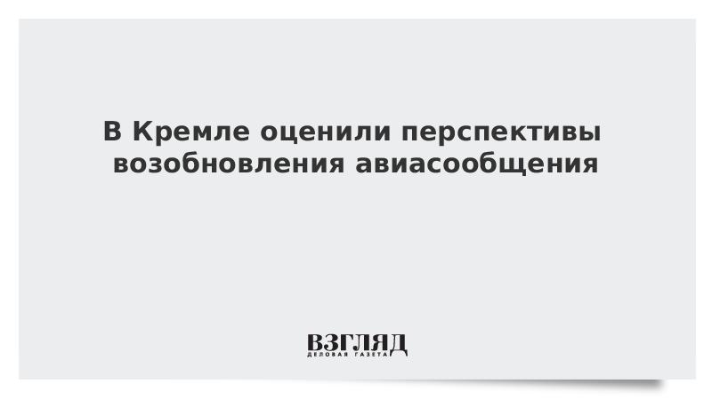 В Кремле оценили перспективы возобновления авиасообщения с другими странами