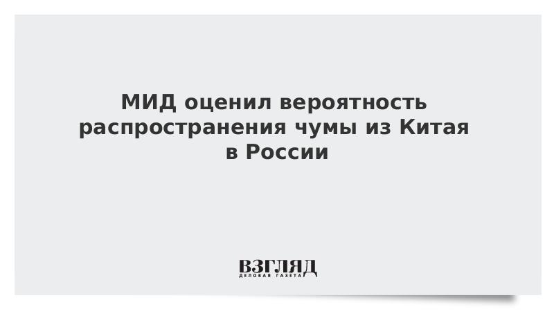 МИД оценил вероятность распространения чумы из Китая в России