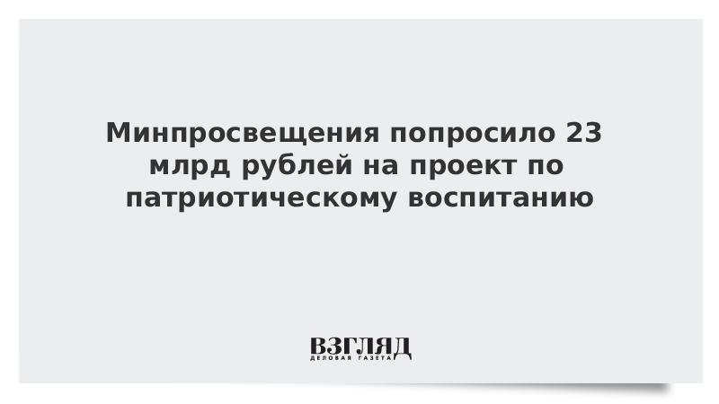 Минпросвещения попросило 23 млрд рублей на проект по патриотическому воспитанию