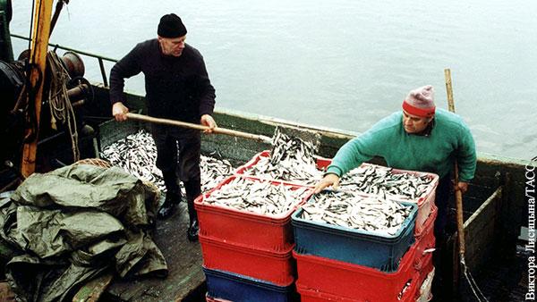ЕС вынудил латвийских рыбаков переехать в Россию