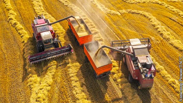 Экономика: Коронавирус помог новым рекордам сельского хозяйства России