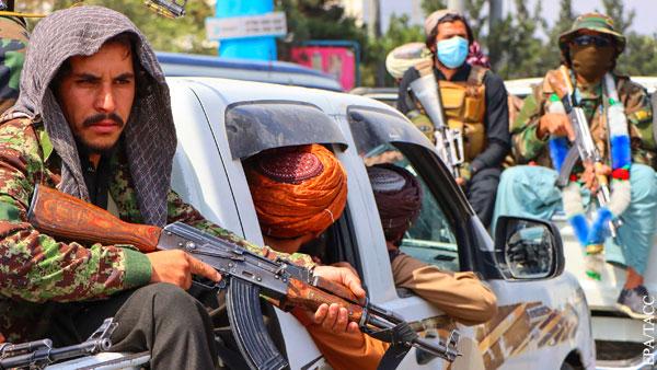 Талибы начали изучать афганские порносайты для выявления местных проституток