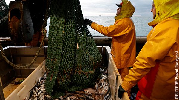 Рыбы в Балтийском море становится все меньше
