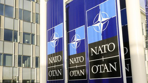 НАТО призвали прекратить тыкать палкой в медведя