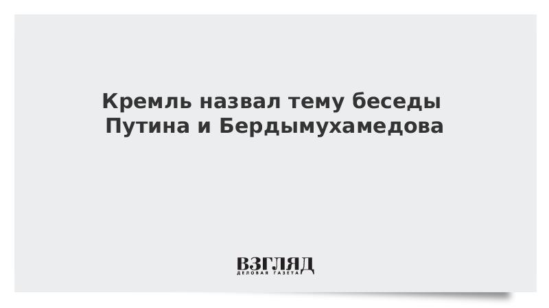 Кремль назвал тему беседы Путина и Бердымухамедова