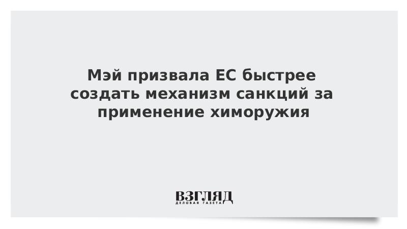 Мэй призвала ЕС быстрее создать механизм санкций за применение химоружия
