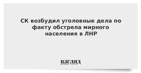 СК возбудил уголовные дела по факту обстрела мирного населения в ЛНР