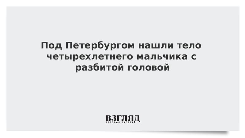 Под Петербургом нашли тело четырехлетнего мальчика с разбитой головой