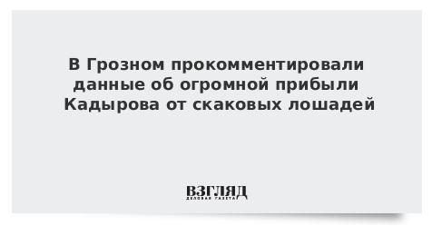 В Грозном прокомментировали данные об огромной прибыли Кадырова от скаковых лошадей