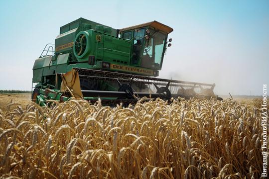 Один из главных покупателей российской пшеницы отказался платить