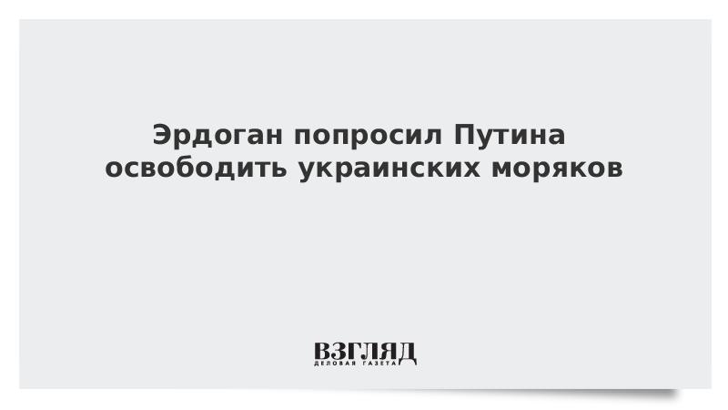 Эрдоган попросил Путина освободить украинских моряков