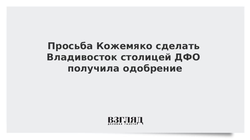 Просьба Кожемяко сделать Владивосток столицей ДФО получила одобрение