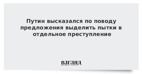 Путин высказался по поводу предложения выделить пытки в отдельное преступление