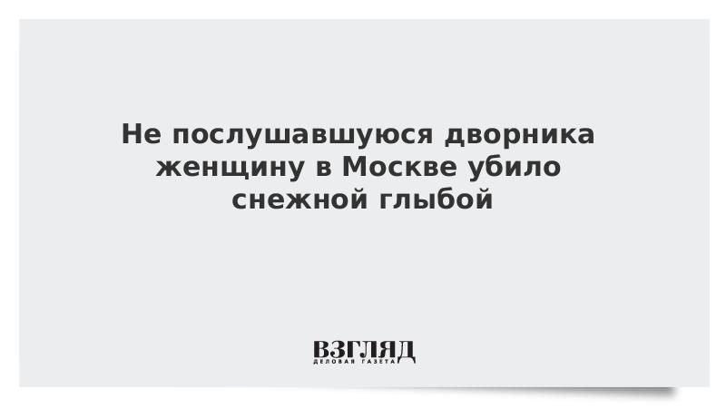 Не послушавшуюся дворника женщину в Москве убило снежной глыбой
