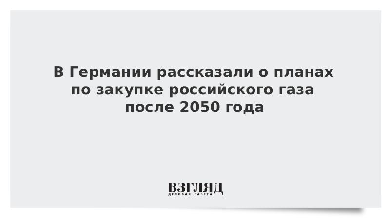 В Германии рассказали о планах по закупке российского газа после 2050 года