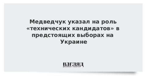 Медведчук указал на роль «технических кандидатов» в предстоящих выборах на Украине