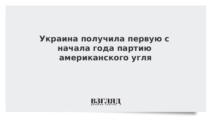 Украина получила первую с начала года партию американского угля