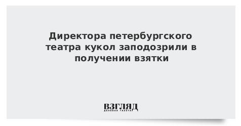 Директора петербургского театра кукол заподозрили в получении взятки