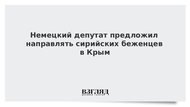 Немецкий депутат предложил направлять сирийских беженцев в Крым
