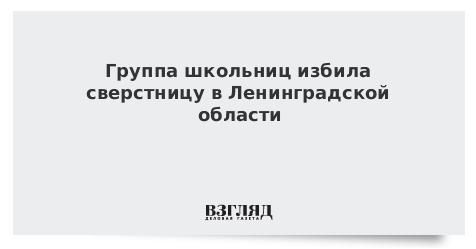 Группа школьниц избила сверстницу в Ленинградской области
