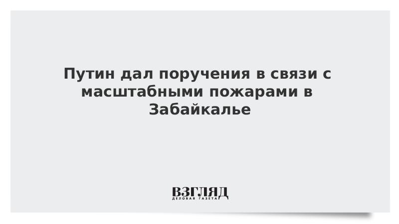 Путин дал поручения в связи с масштабными пожарами в Забайкалье