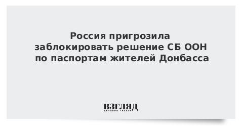 Россия пригрозила заблокировать решение СБ ООН по паспортам жителей Донбасса