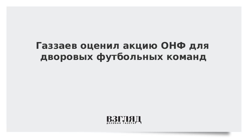 Газзаев оценил акцию ОНФ для дворовых футбольных команд
