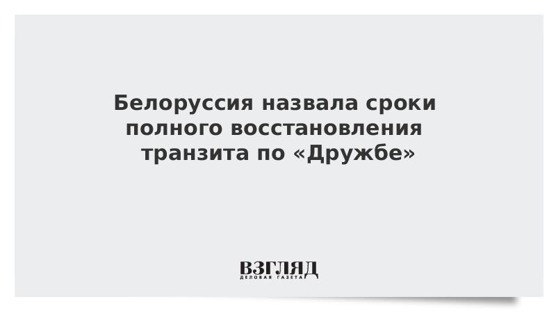 Белоруссия назвала сроки полного восстановления транзита по «Дружбе»